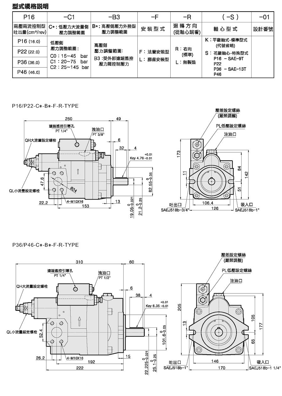 piston pump specification